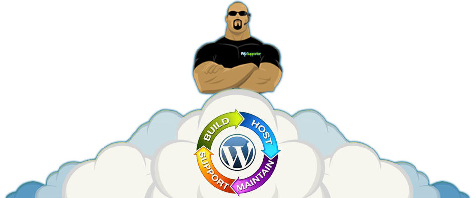 Professional Wordpress Installation & Setup Services - Affordable Wordpress Websites For Bloggers And Small / Medium Businesses